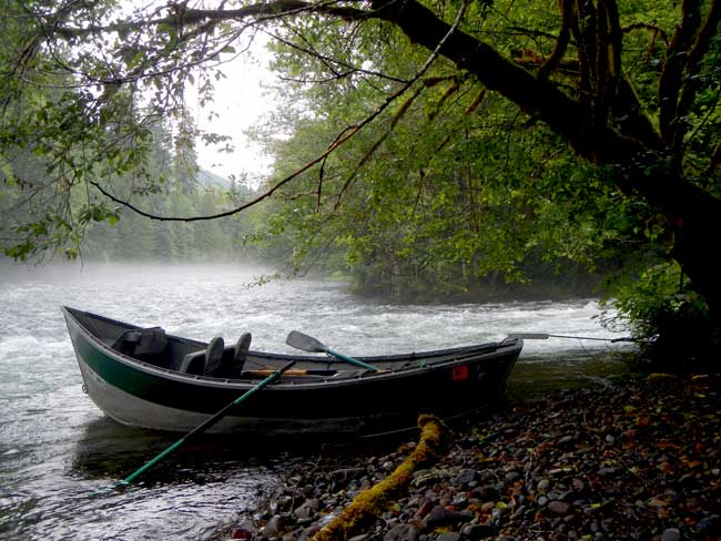 Driftboat Fly Fishing with Jeff Helfrich on the McKenzie River Oregon